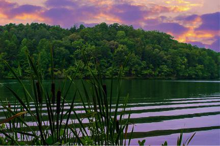 toccoa lake
